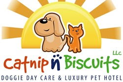 pet friendly boarding and grooming in savannah georgia, pet care savannah dogs allowed